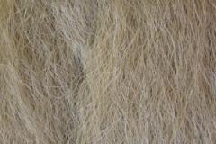olivová blond 16