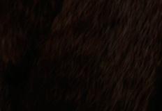 tmavě kaštanová 33